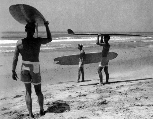 Original Photo For The Endless Summer